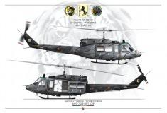 HH-212 21° Gruppo Tiger Meet